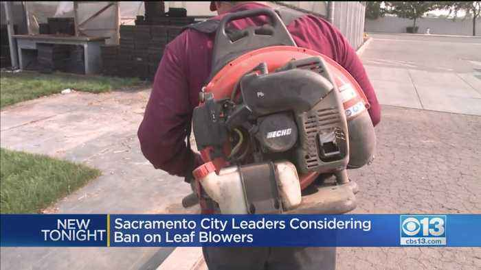 Sacramento City Leaders Considering Ban On Leaf Blowers