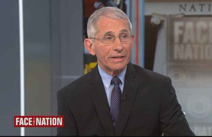 More than 40 Americans infected with coronavirus on cruise ship: Fauci