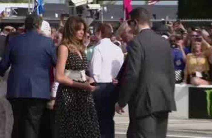 Trump ramps up re-election effort at Daytona 500
