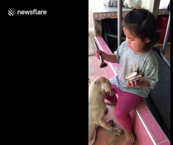 Dog stands still as two-year-old Thai girl applies makeup