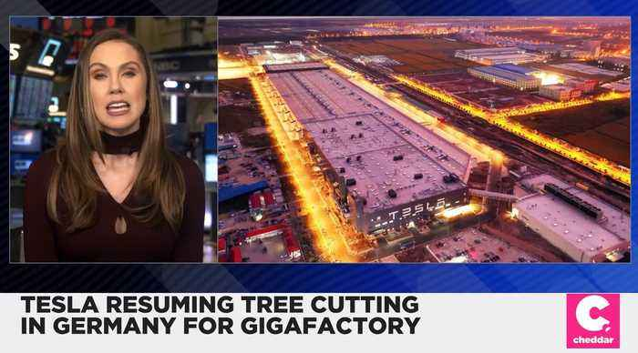 Tesla Resuming Tree Cutting for Gigafactory in Germany