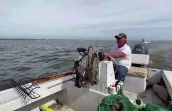 Oystermen struggle to survive amid Florida, Georgia water battle