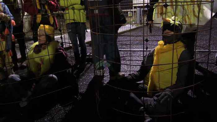 Extinction Rebellion activists dressed as canaries block mine entrance