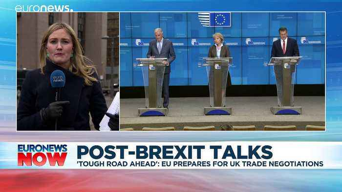 Michel Barnier warns UK: EU will not conclude post-Brexit trade deal 'at any price'