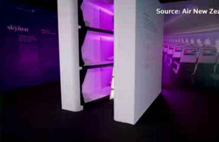 Lie-flat in economy class? Air New Zealand unveils flying bunk beds