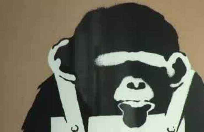 Banksy wows Saudis in Riyadh exhibition