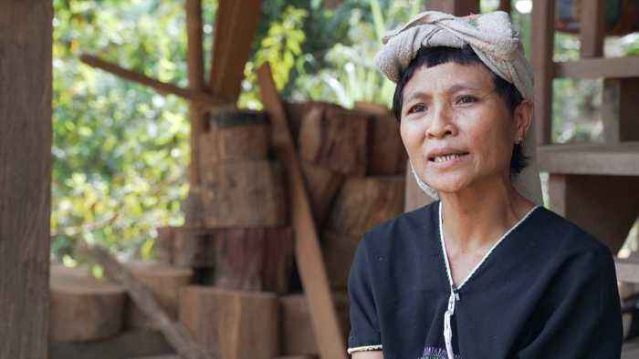 Myanmar: Karen minority demands protection in peace park
