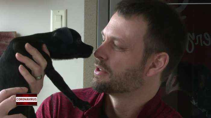 Local adoption center sees record breaking number of animals adopted amid coronavirus outbreak