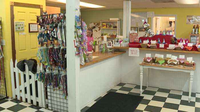 North Ridgeville pet food store, Grateful Dog Bakery, open amid stay at home order