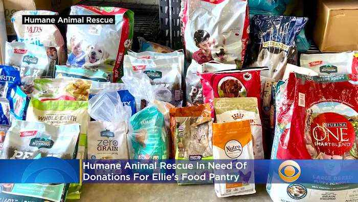 Humane Animal Rescue In Need Of Donations For Ellie's Pet Food Pantry
