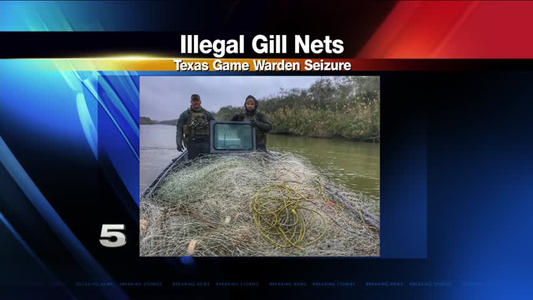 Game wardens see spike in gillnet seizures one news page for Can fish have seizures