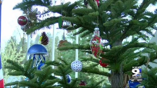 U S Capitol Christmas Tree To Come From Oregon One News