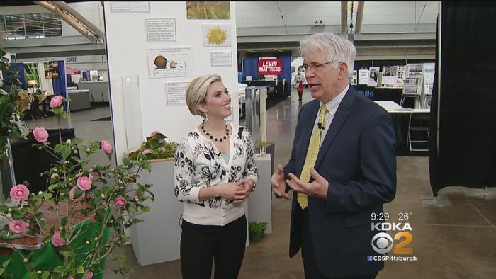 Heather Abraham Takes Tour Of Home Garden Show One News Page Video