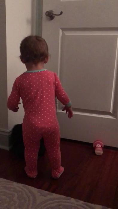 Cat Helps Baby Girl Open Door After She One News Page Video