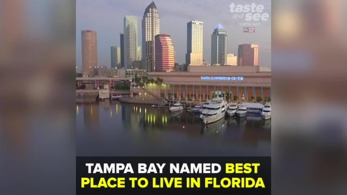 tampa bay named best place to live in one news page video