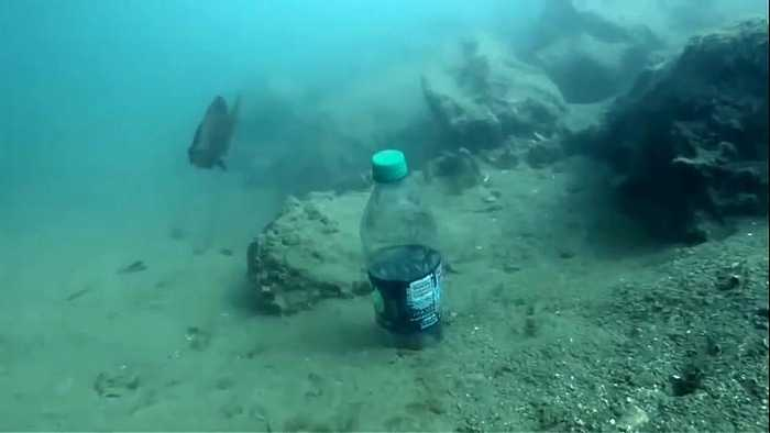 News video: UK urges Commonwealth to tackle marine pollution