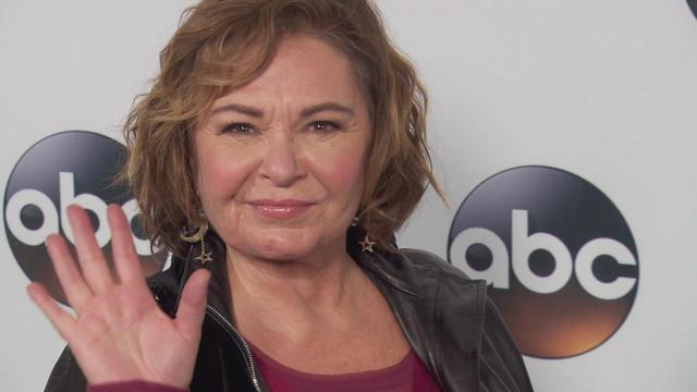 Roseanne Barr Says She's Giving Up Ambien - One News Page ...