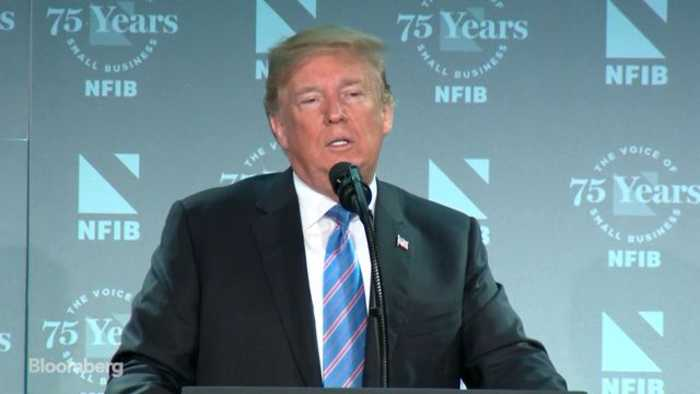 Trump Says He Wants Authority to Detain Illegal Migrant Families as a Unit