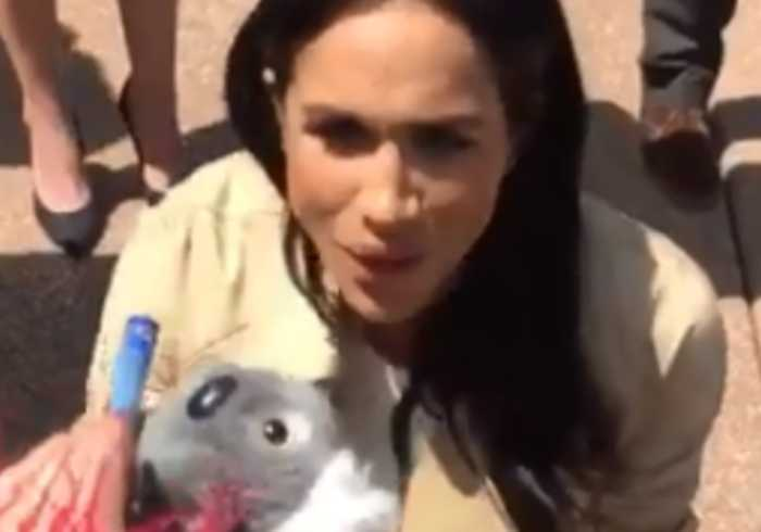 'This is for Your Baby': Child Offers Pregnant Meghan Koala Soft Toy