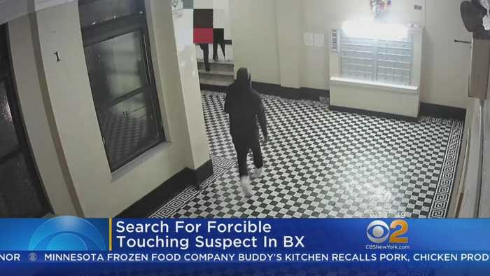 Suspect Sought In Bronx Forcible Touching Case