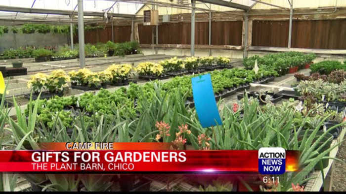 Gifts for Gardeners during the Camp Fire Recovery