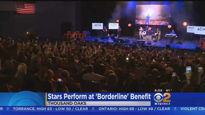 Tyler Rich, Trace Adkins Put On Benefit Concert For Borderline Bar Victims