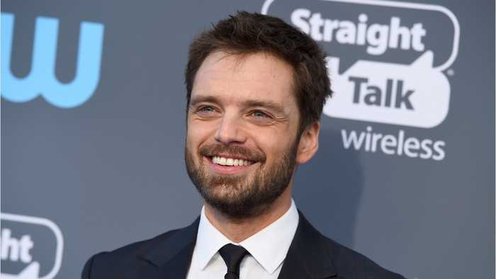 Sebastian Stan To Take Over For Chris Evans In Upcoming Netflix Project