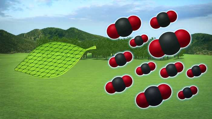 New artificial leaf design can absorb CO2 from air
