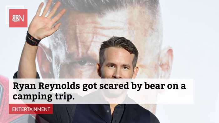 Ryan Reynolds Tells His Real Bear Story