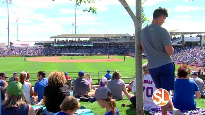 Spring Training swings into action at Surprise Stadium