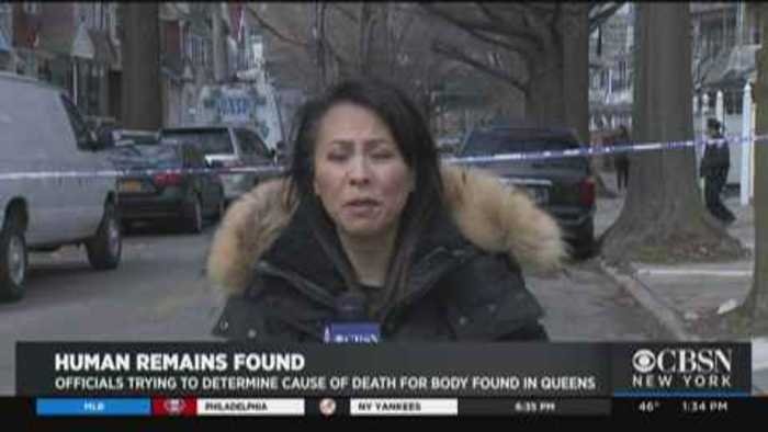 Human Remains Found In Queens