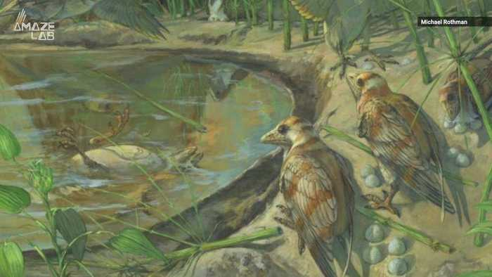 The Sad Story of an Ancient Bird That Died With Its Egg Still Inside Her Body