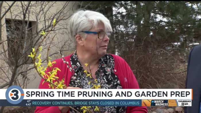 Lisa Briggs explains spring pruning