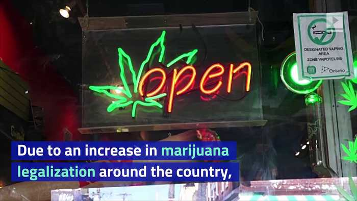 US Businesses Are Starting to Embrace 420