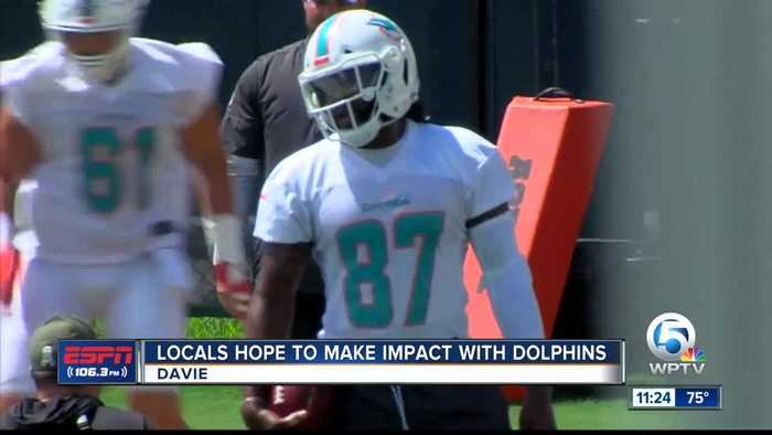 PB County players make impact for Dolphins