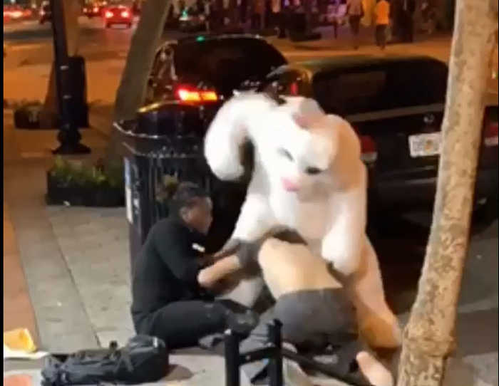 WEB EXTRA; Florida Easter Bunny Brawl Video Goes Viral
