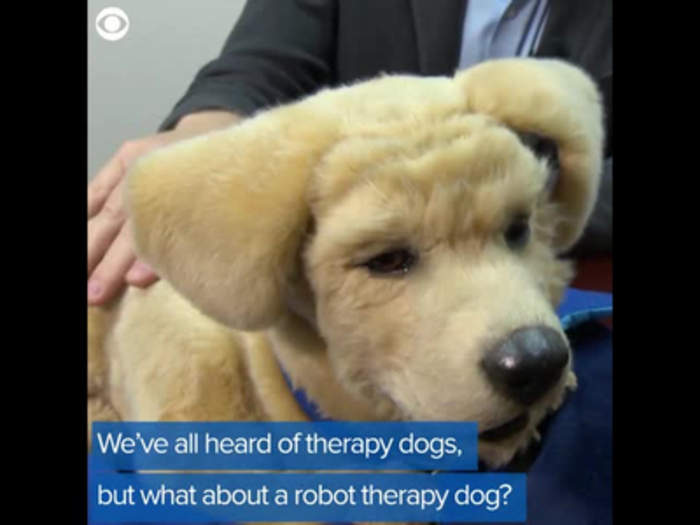 Robot Therapy Dog