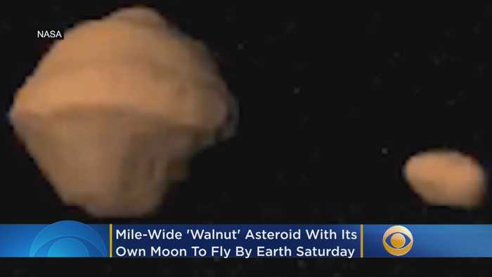 Mile-Wide 'Walnut' Asteroid With Its Own Moon To Fly By Earth Saturday