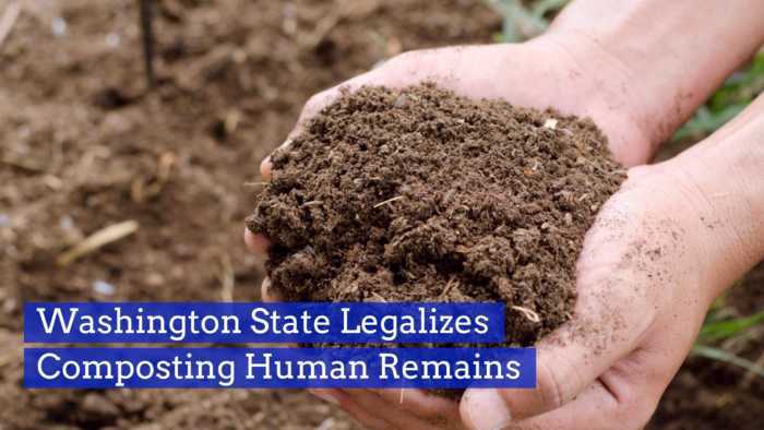 Human Remains Can Be Turned Into Soil
