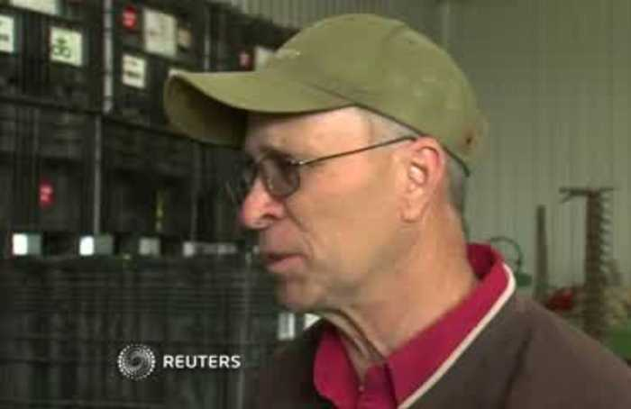 Trade frustrations grow for Iowa soybean farmers