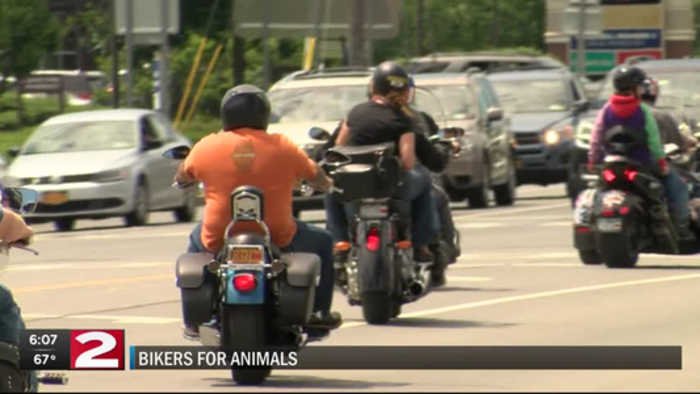 bikers for animals