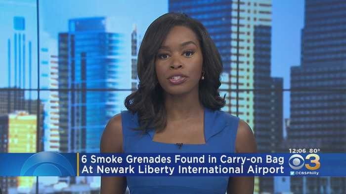 6 Smoke Grenades Found In Carry-On Bag At Newark Liberty International Airport