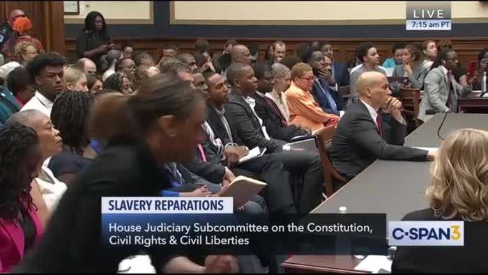 Republican Booed at Reparations Hearing for Claiming Slavery Reparations 'Unconstitutional'