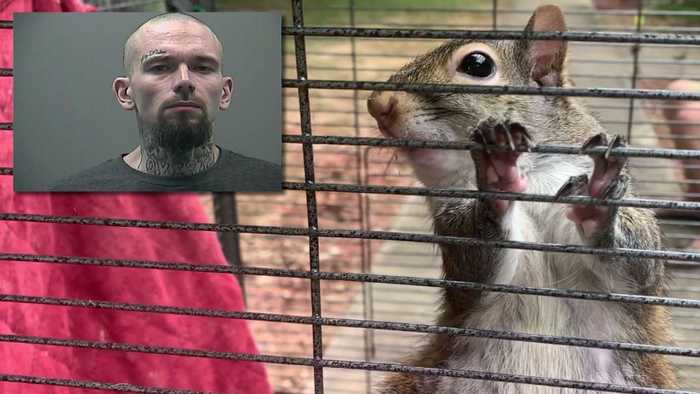 Alabama Deputies Say a Man Had a Meth-Fueled Attack Squirrel