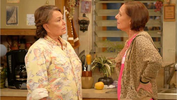 Roseanne Barr Is Going On A Stand Up Tour