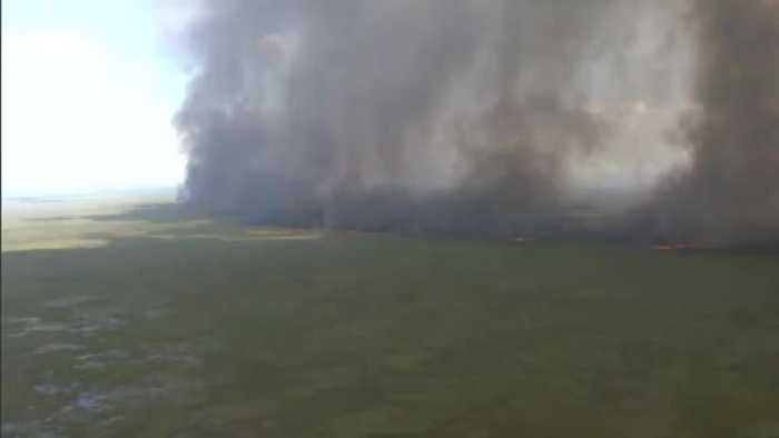Massive brush fire in Everglades
