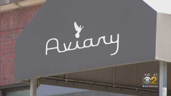 Spitting Incident Puts The Aviary In The Spotlight