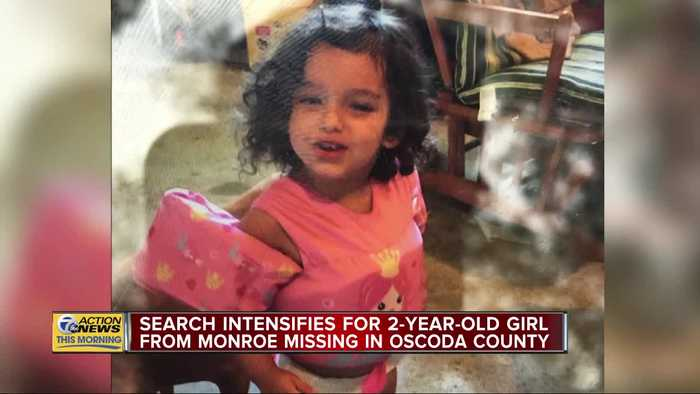 Search intensifies for 2-year-old girl missing in Oscoda County