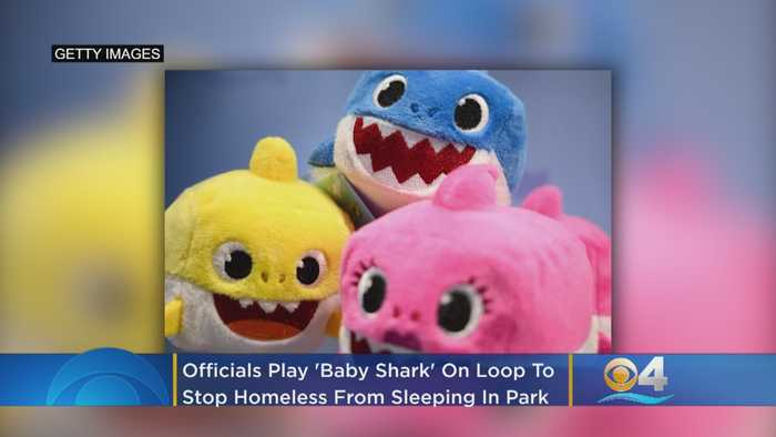 West Palm Beach Officials Play 'Baby Shark' Continuously To Stop Homeless From Sleeping In Park