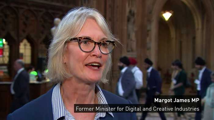 Digital minister resigns after voting against government